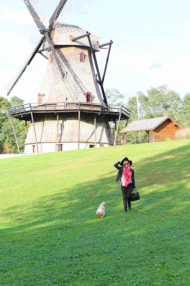 geneva illinois windmill_1589