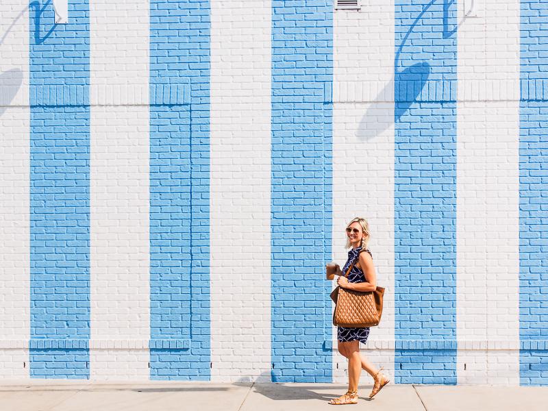 draper james wall mural